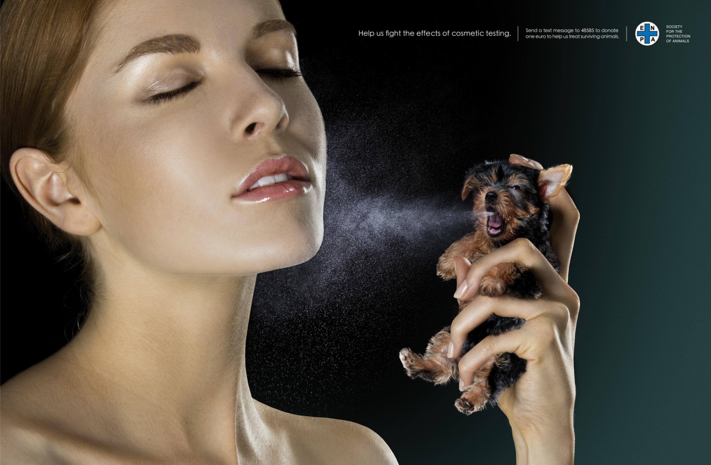 Geek Cat - Marketing - kreatywna kampania przeciw testowaniu kosmetyków na zwierzętach