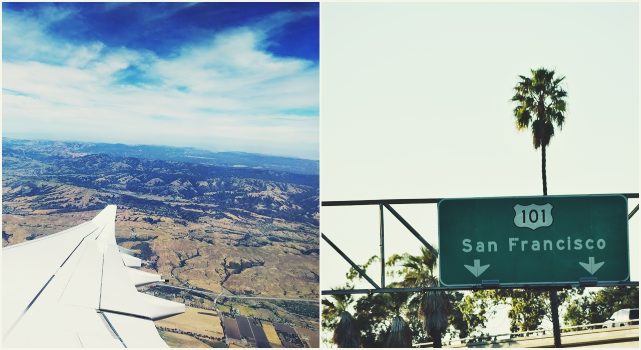 Geek Cat Dolina Krzemowa San Francisco