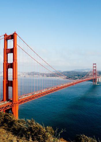 Geek Cat Dolina Krzemowa San Francisco Golden Gate Bridge