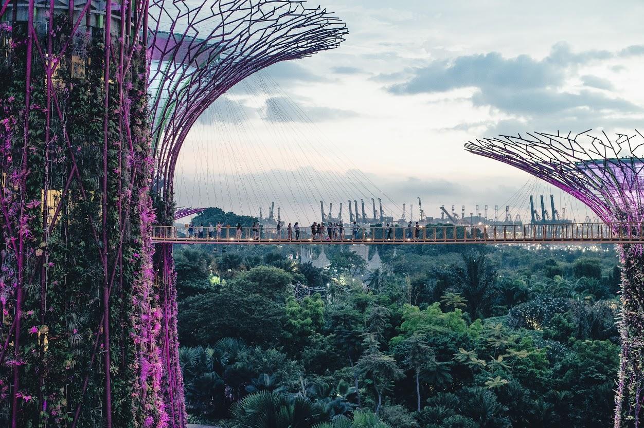 Geek Cat - Singapur - co zwiedzić - Gardens by the Bay