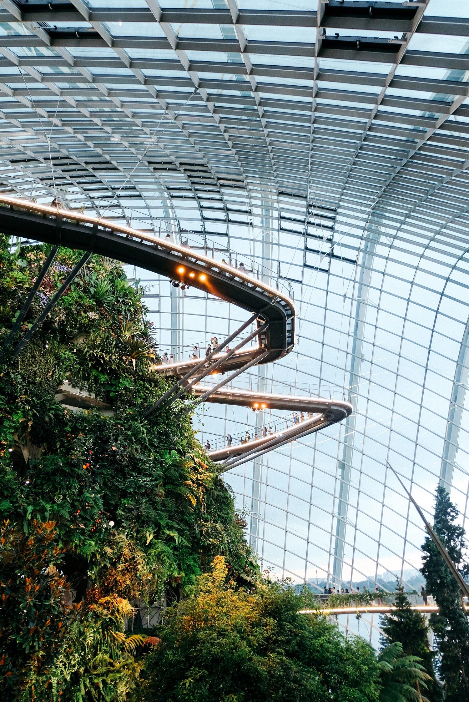 Geek Cat - Singapur - co zwiedzić - Gardens by the Bay Cloud Forest 2
