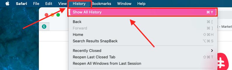 Historia wyszukiwania - Safari 1